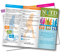Graphic of the National Youth In Transition Database brochure