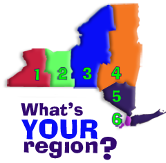 Graphic of the Youth In Progress region of NY